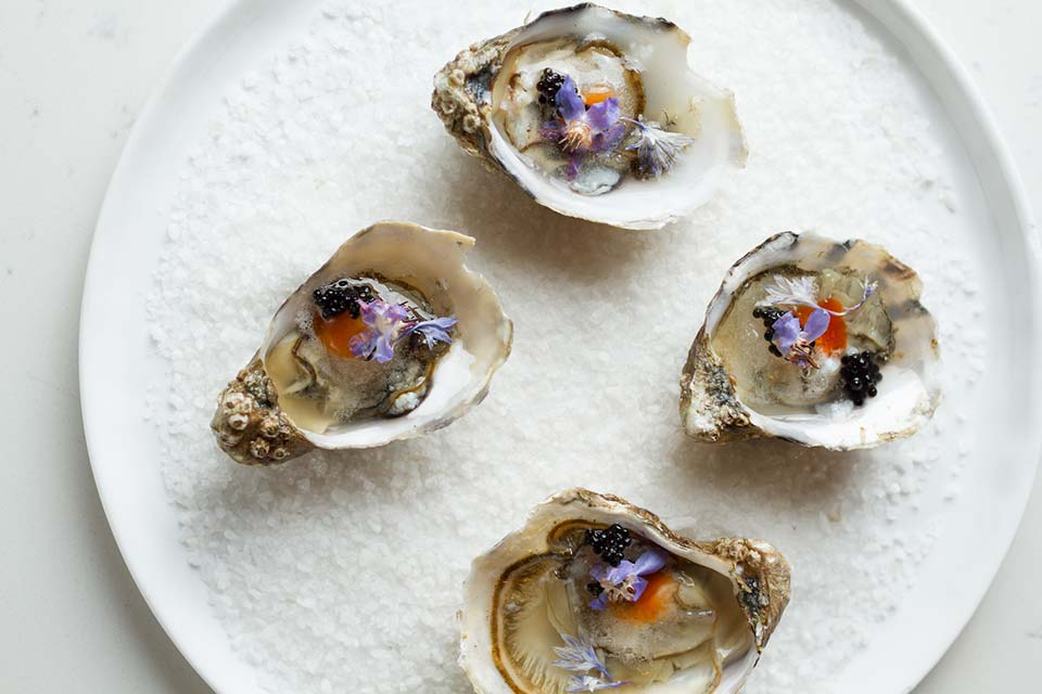 Fly to Seattle, get fresh seafood at Taylor Shellfish Oyster Bar.